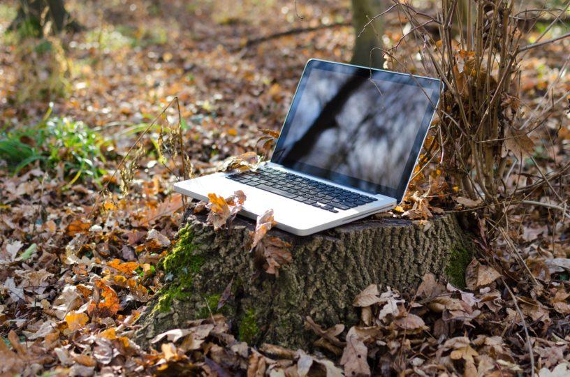 Arvuti. Pixabay